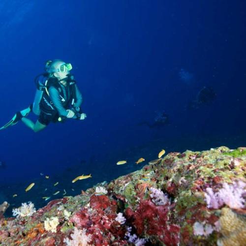 Diver explores Koh Bon