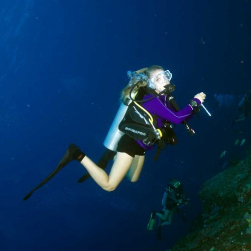 Diver in purple