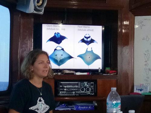 Anna Flam, Marine Megafauna Foundation, presentation