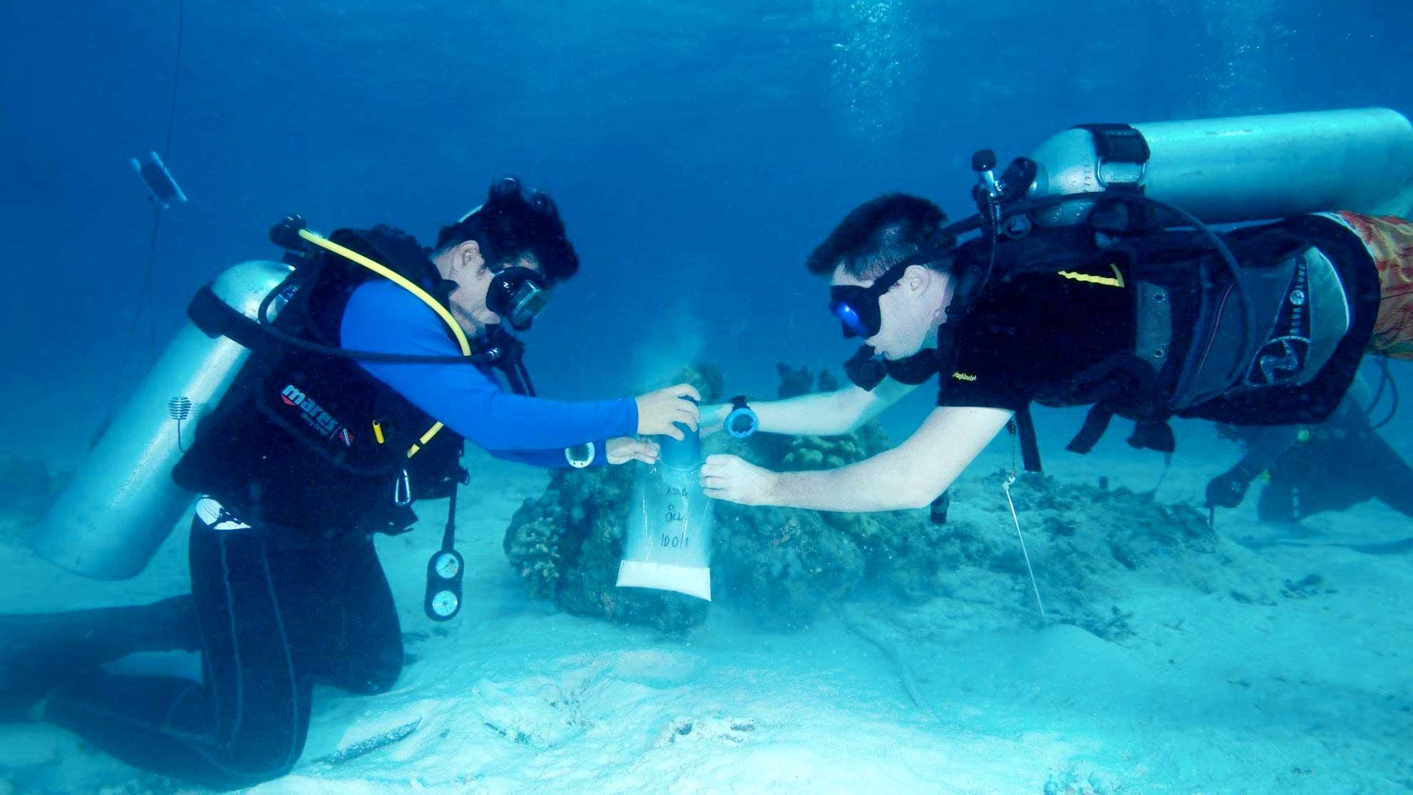 Similan islands scientific research experiments scuba diving