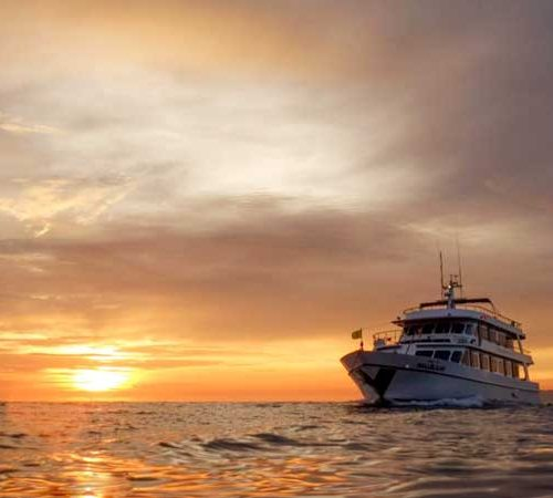 Mv Hallelujah at sunset in the Similans