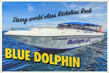 Blue Dolphin Similan Islands Diving day trips postcard